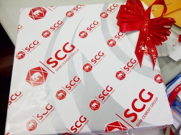 Kunjungan SCG II 21062013 (2)